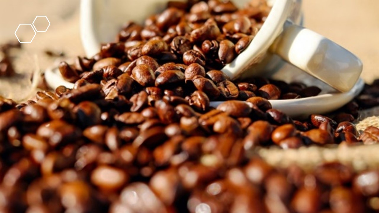 Selecting The Correct Coffee Beans For Yourself!