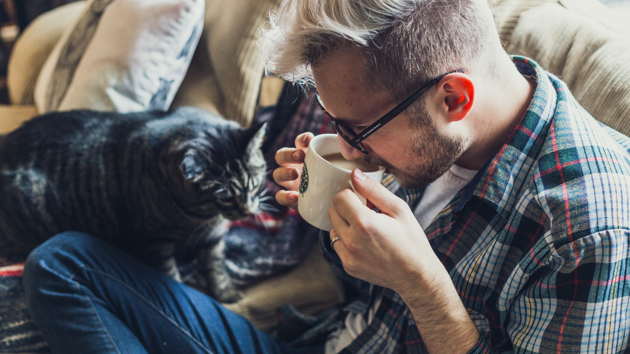 Five Reasons Why One Ought To Drink More Coffee