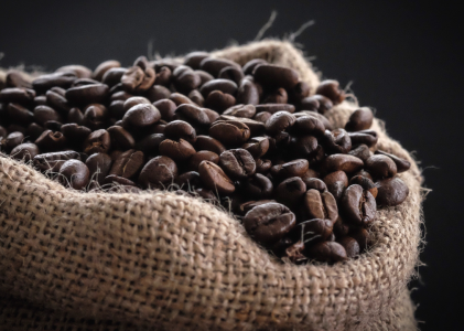 The production of coffee beans is at the center of any making or coffee-making process